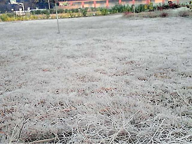 झारखंड : कांके में पारा लगातार दूसरे दिन भी जीरो डिग्री